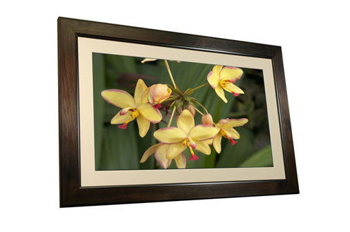 32 inch Digital Picture Frame!