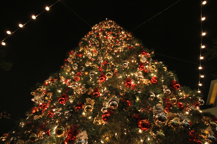 100-feet-tall-christmas-tree